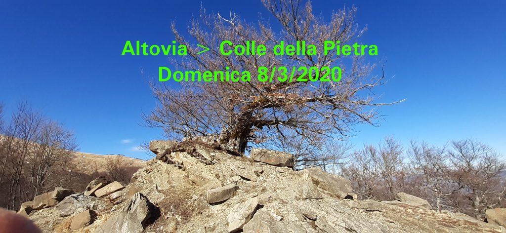Trekking da Altovia al Colle della Pietra (Monti della Laga). Domenica 8 marzo 2020.